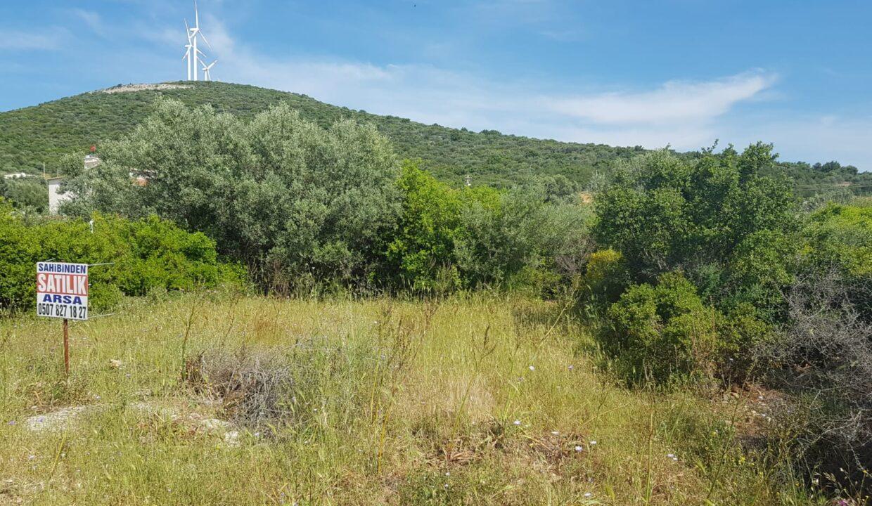 Greenhill Land 700m2 (3)
