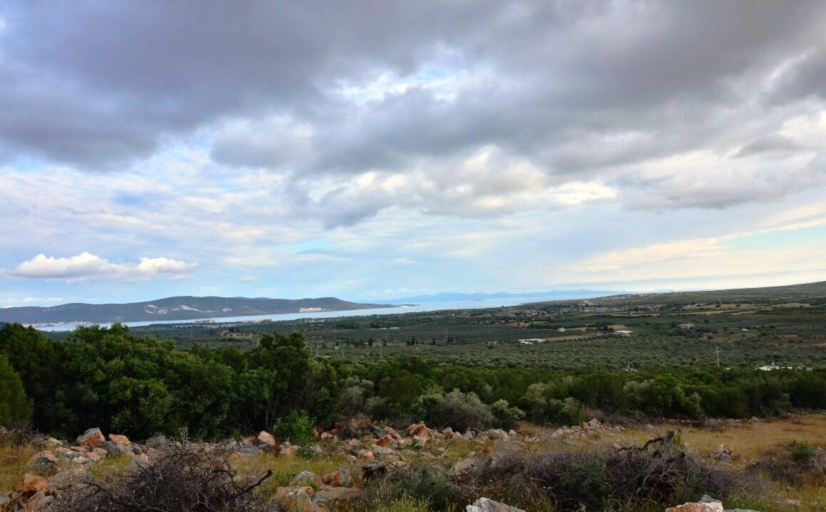 Sea View Lands (1)