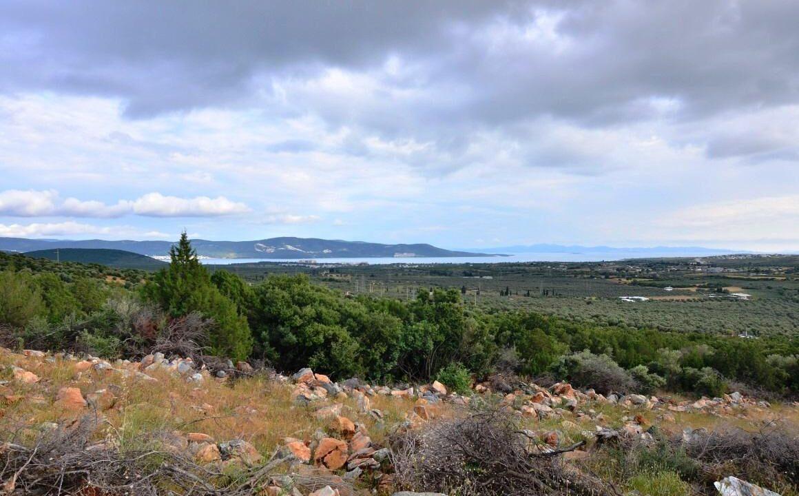 Sea View Lands (2)