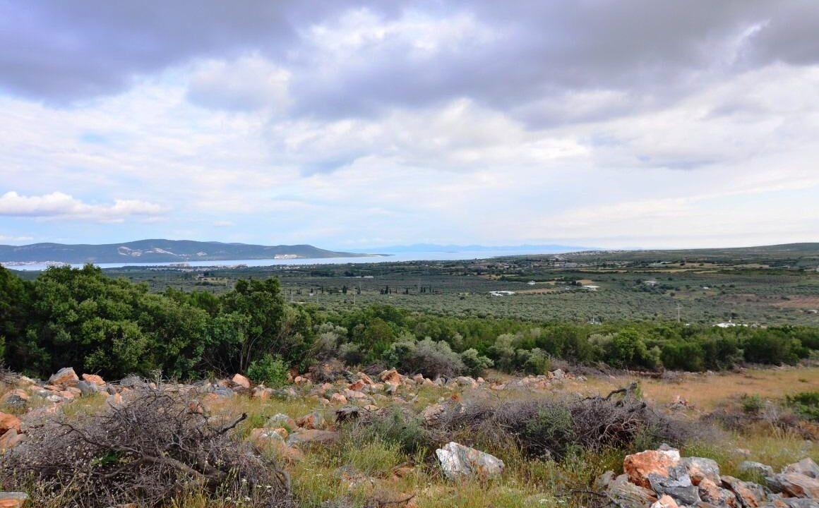 Sea View Lands (3)