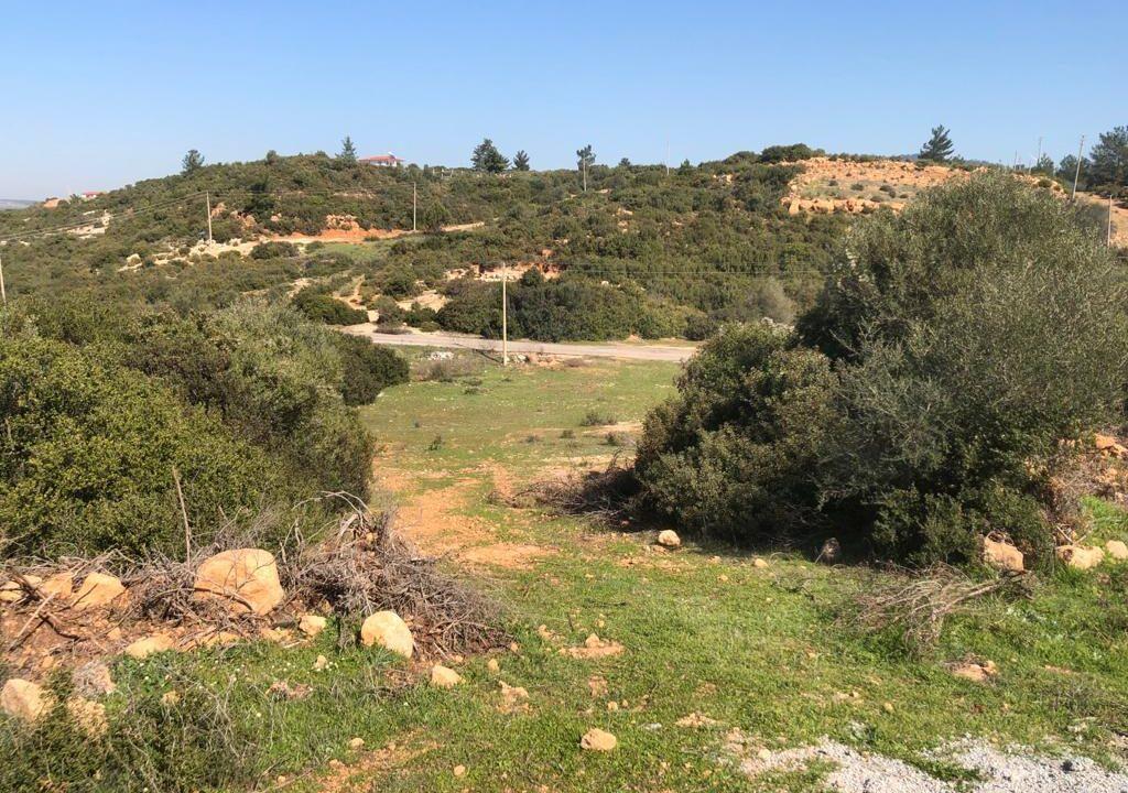 Yesiltepe land (2)
