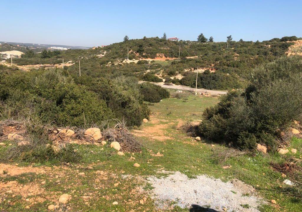 Yesiltepe land (3)