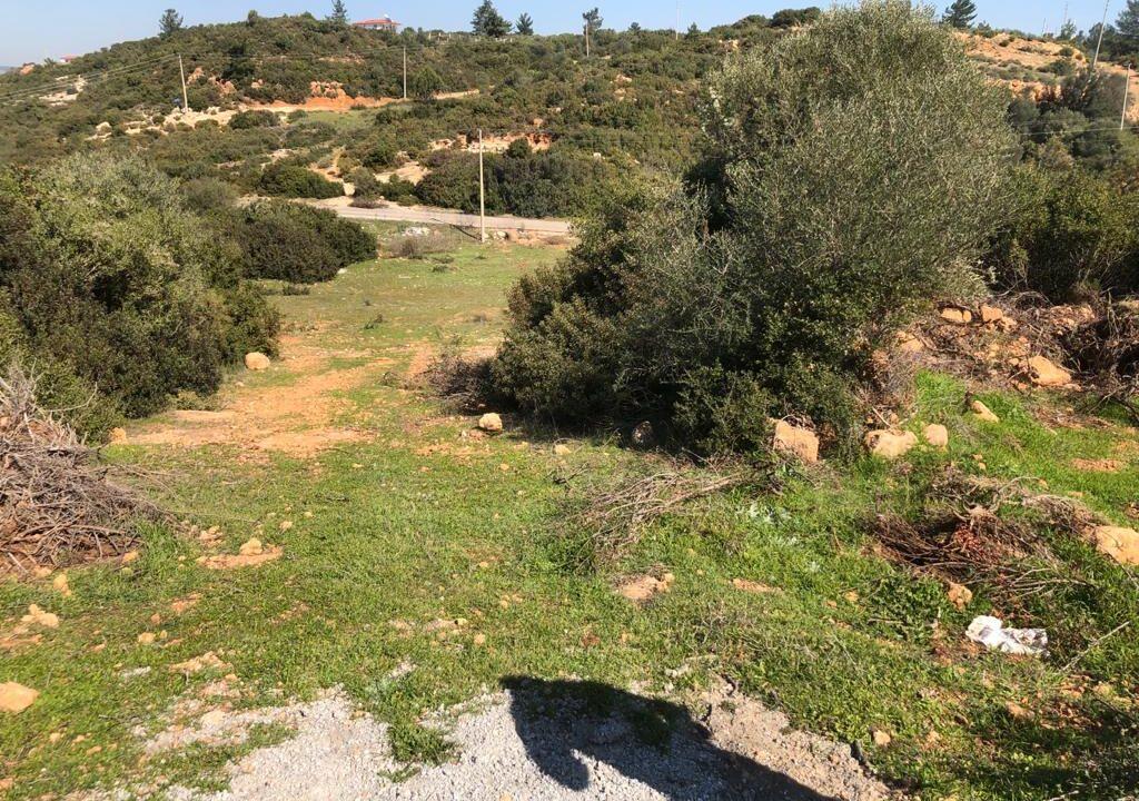 Yesiltepe land (4)
