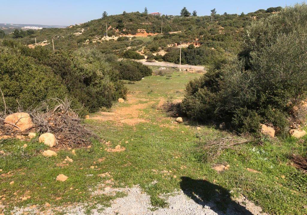 Yesiltepe land (5)