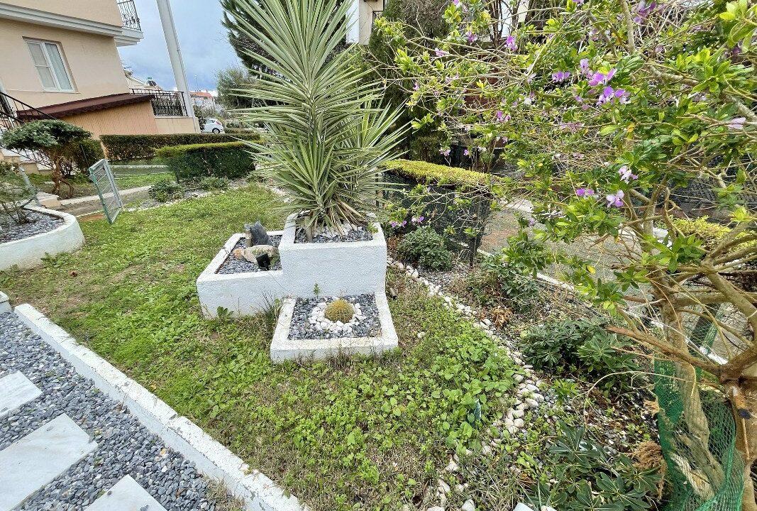 Aegean Pine Quattro (25)